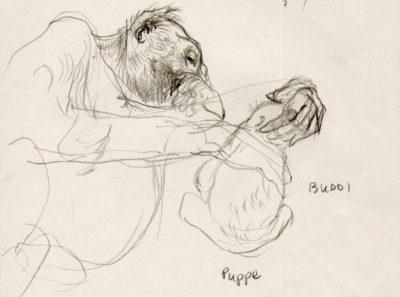 Puppa & Budd